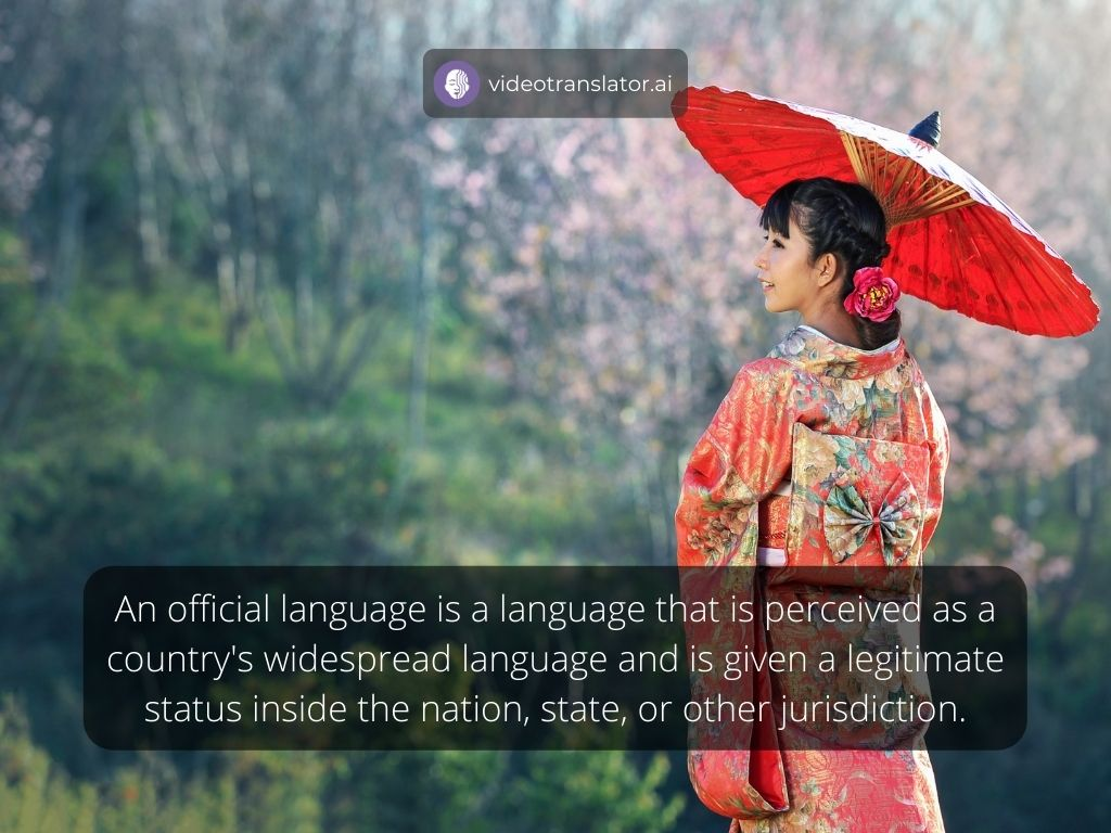 Definition of official language